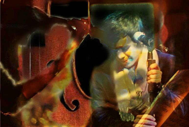 violin554